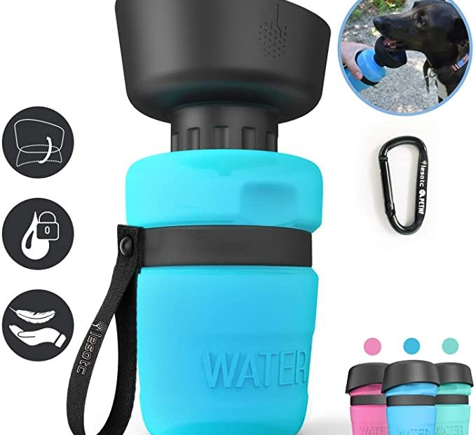 Water bottle for your dog
